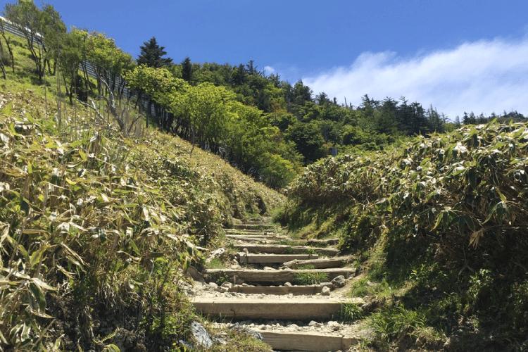 大剣道神社から山頂の道